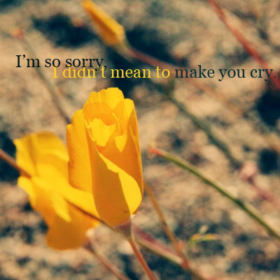 I'm So Sorry I Didn't Mean To Make You Cry