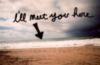 I'll meet you here