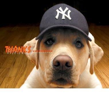 Thanks.... NY Hat