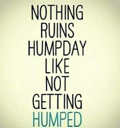 Nothing Ruins Humpday Like Not Getting Humped