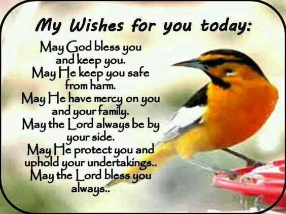My wishes for you today