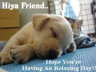 Hiya Friend