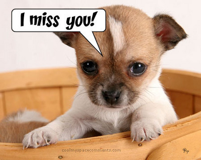 I Miss You Puppy