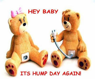 Hey Baby Its Hump Day Again