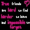 True Friends Are Hard To Find Harder To Leave And Impossible To Forget