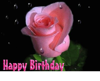 Happy Birthday Pink Rose