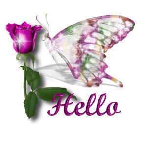 Hello Violet Rose
