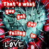 That's What You Got For Falling In Love