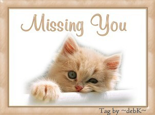 Missing You Kitty