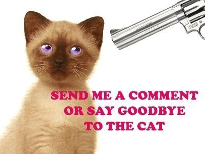 Send Me A Comment Or Say Goodbye To The Cat