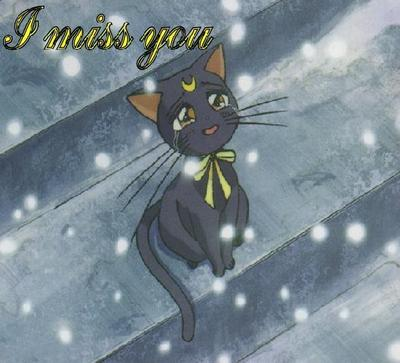 I Miss You Anime Cat