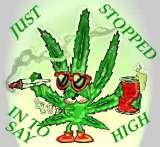 Sayin' High