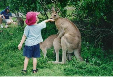 Humping roos