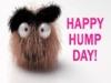 Happy Hump Day