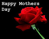 Happy Mothers Day , Black Background , Red Rose