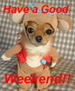 Have A Good Weekend. funny puppy