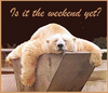 Is it the weekend yet?