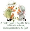 a real friend is hard to find, difficult to leave, and impossible to forget
