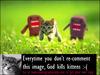 God Kills Kittens..