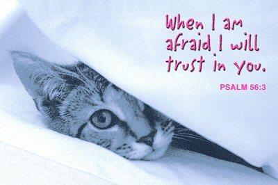 WHEN I AM AFRAID I WILL TRUST IN YOU.