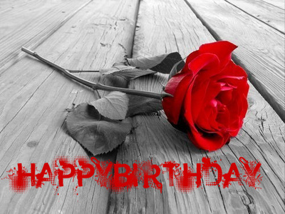 HAPPY BIRTHDAY -- red rose, red text