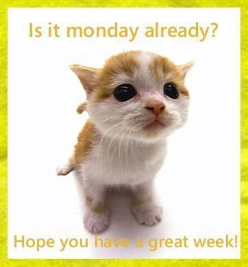 is is Monday already?