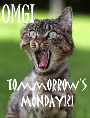 OMG! Tomorrow is Monday!