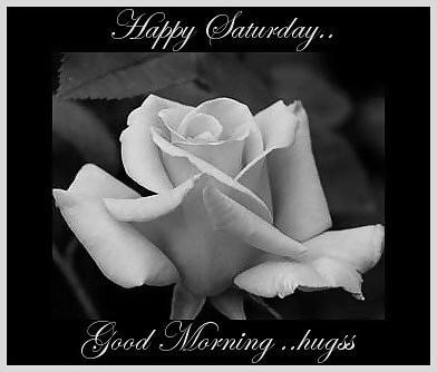 happy Saturday... Good morning Hugs
