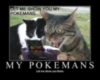 Pokeman, meow!