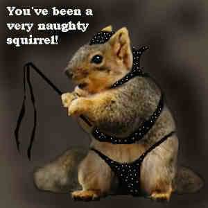 YOU'VE BEEN A VERY NAUGHTY SQUIRREL