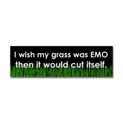 I wish my grass was emo, then it would cut itself
