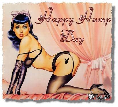 happy hump day !
