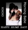 Morning Hump Day