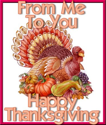 from me to you , happy thanksgiving