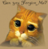 can you forgive me?