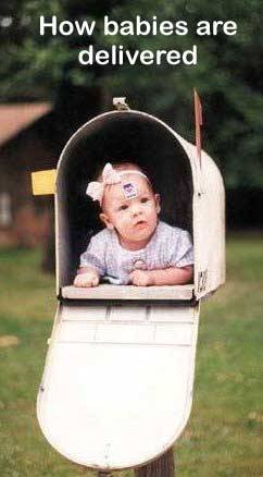 how babies are delivered