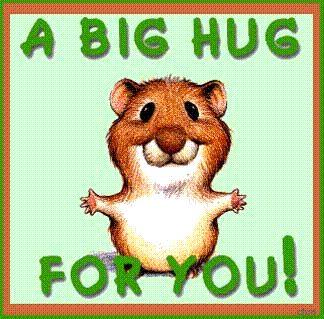 a big hug for you!