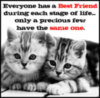 Best-Friends-for-Life