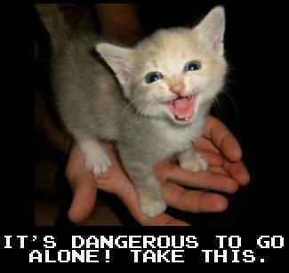 Dangerous To Go Alone Take This Kitten