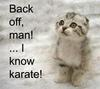 I Know Karate - Kitty