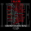 I dont hate you