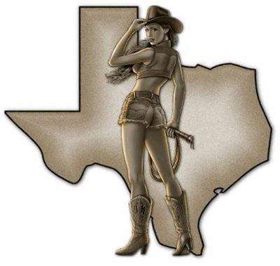 Texas Chick