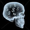 Guys Skull