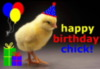 happy birthday chick