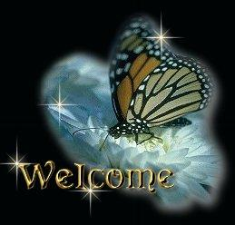 welcome with butterfly on moon